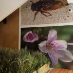 Interior-Photo10-CROP